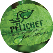 Green Pelichet leaf graphic.